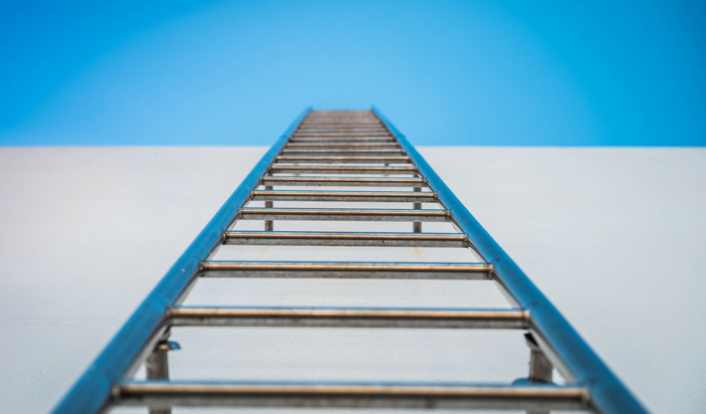 Are your racing up the ladder of inference? | Feedback: A Formula to Face and Embrace | Chandler Coaches