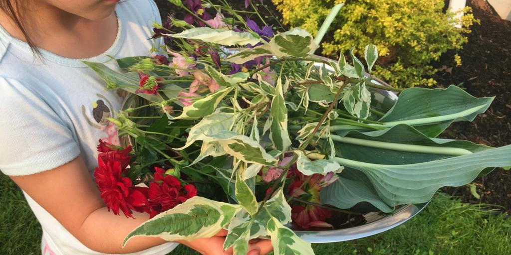 Chandler-Coaches-Les-fleurs-de-Lali-planting