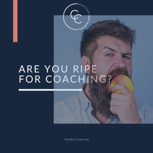 A punching bag in your toolkit via Lisa Chandler at ChandlerCoaches.com